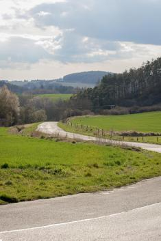 cesta naZvíkovec, foto:Eva Foremanová